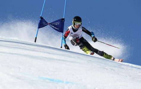 My Racing Heart: Skiing for Dummies